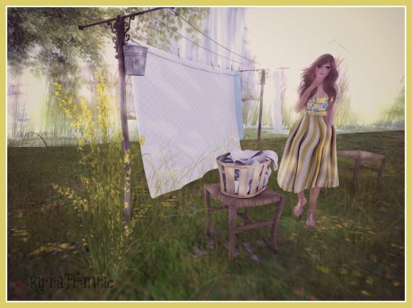 Washing Day 1
